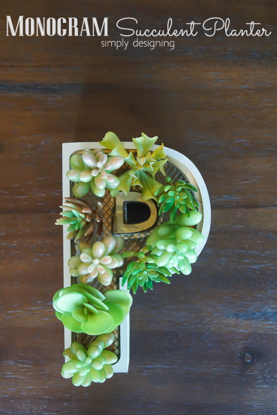 Monogram-Succulent-Planter-this-is-such-a-fun-and-modern-decoration-and-it-is-so-simple-to-make